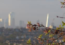 London skyline with greenery